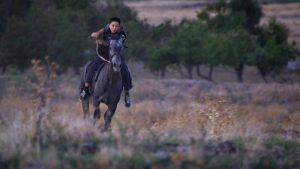 HORSE FEVER - DANIAR IM PFERDEFIEBER